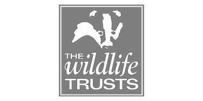 SWWFL Logo Grey Website